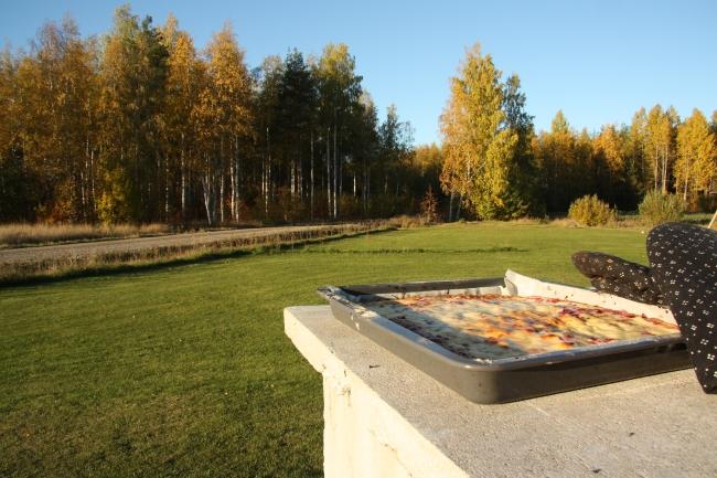 scenic fall2