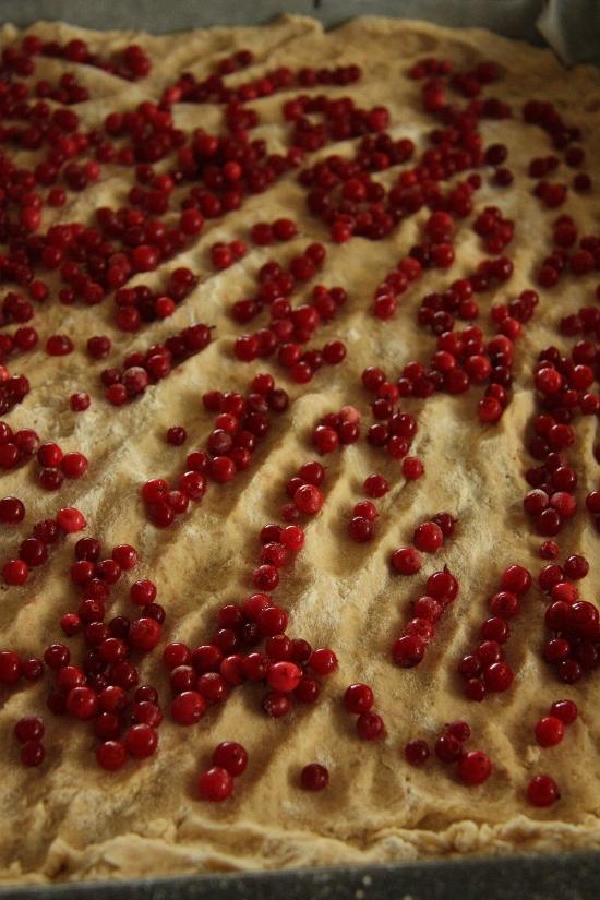 tart berries