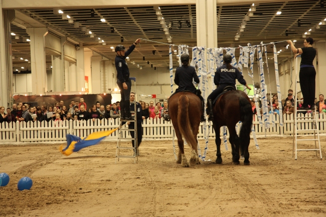 police horse show