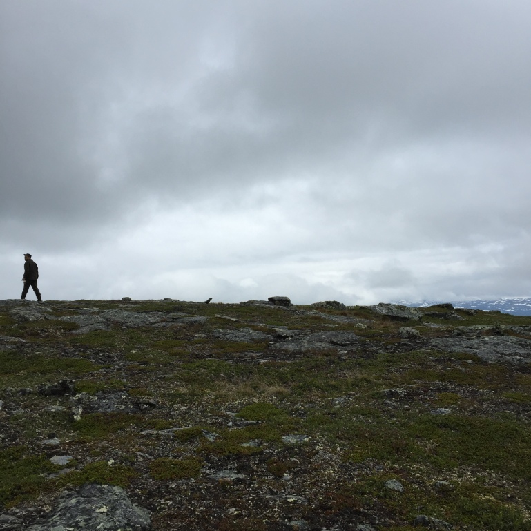 climbing the nordic fell