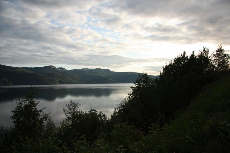 norwegian fjords fauske 2