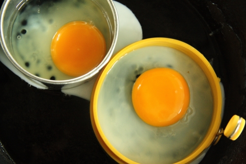 owl eyes eggs in a pan
