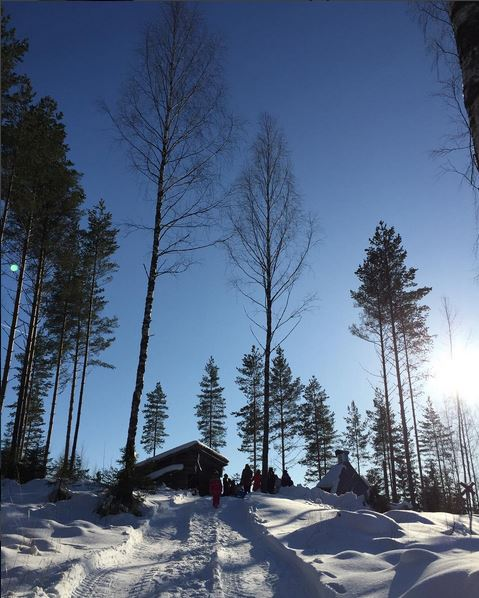 laavuretki finnish winter