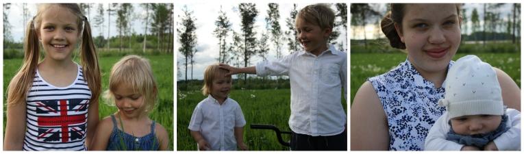 summer field finland