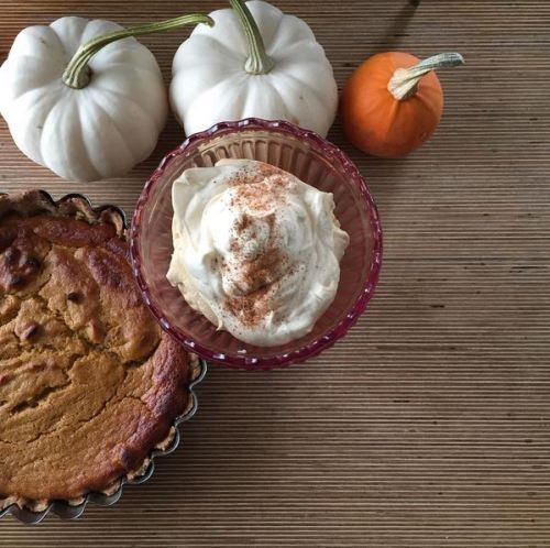 worlds-best-gluten-free-refined-sugar-free-pumpkin-pie-3
