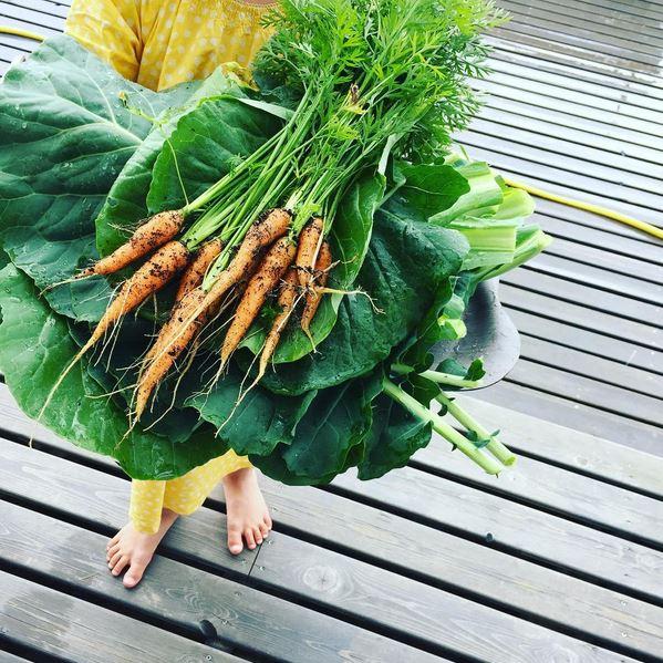 garden fresh produce